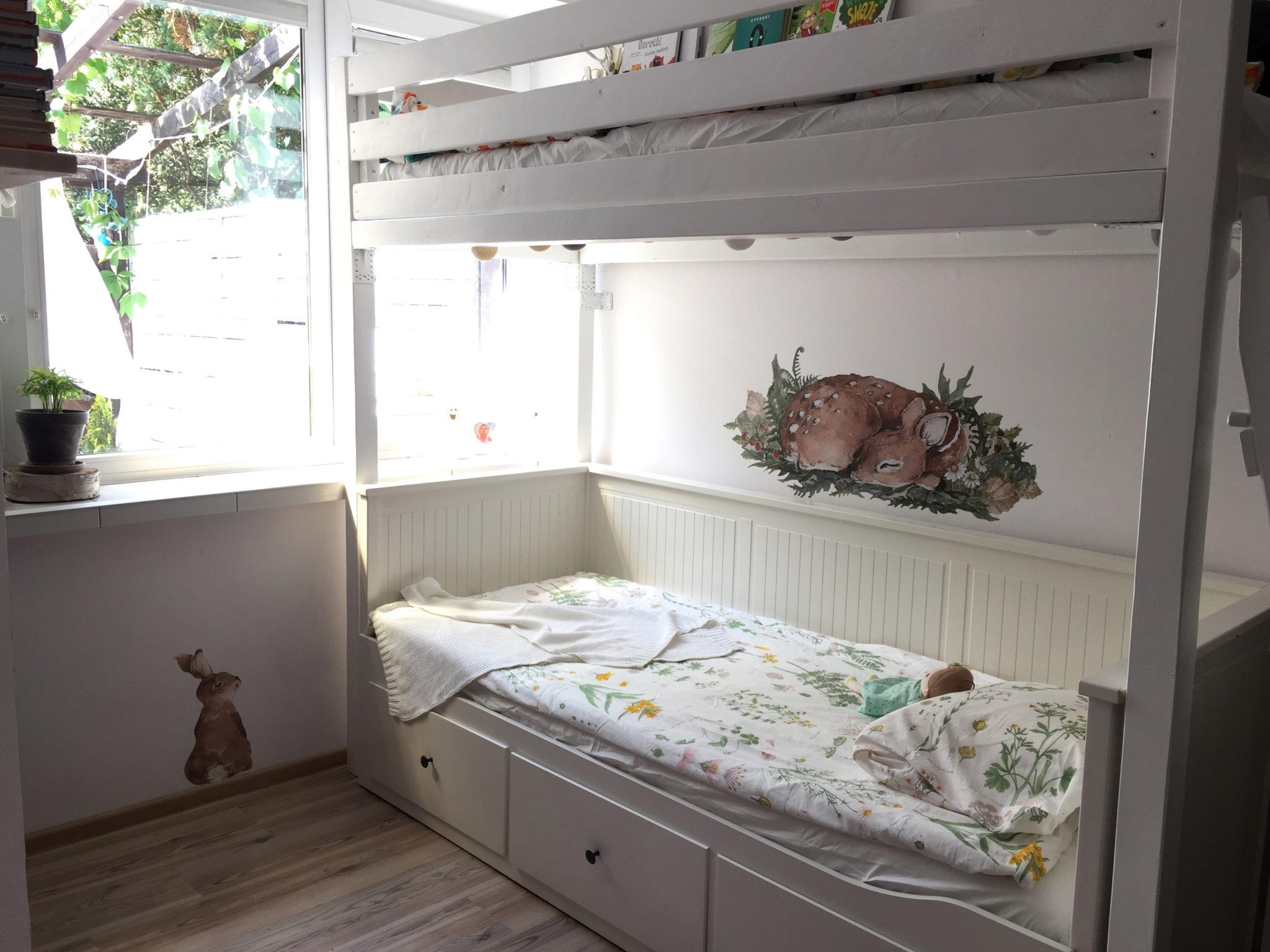 Kliknij w zdjęcie, żeby przejść do królika